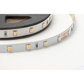IP20 5W/m 2700K 24V Dimmable LED Striplight Self-adhesive 120deg Beam 420-500lm/m 5m Reel