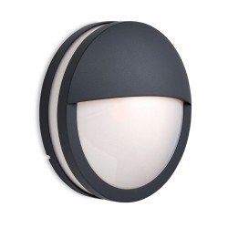 Zenith Round Eyelid Bulkhead in Graphite with Opal Diffuser IP54 for Outdoor Wall/Ceiling Firstlight 8356GP