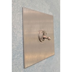 1 Gang 2 Way 20A Dolly Switch in Stainless Steel Plate and Dolly from Forbes and Lomax