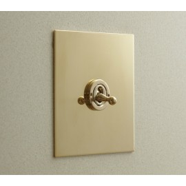 1 Gang Intermediate Dolly Switch in Unlacquered Brass Plate and Dolly from Forbes and Lomax