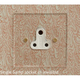 1 Gang 5A Unswitched Single Round Pin Socket in Invisible Plate Plate with Plastic Insert