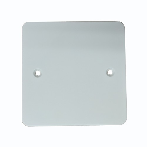 1 Gang Single Blank Plate in Painted Flat Plate from Forbes and Lomax