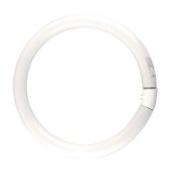 60W Warm White Fluorescent Circular Tube