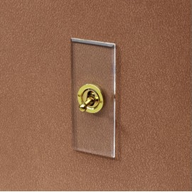 1 Gang 20A 2 Way Architrave Dolly Switch in Invisible Plate with Brass Dolly