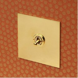1 Gang Double Pole Dolly Switch in Unlacquered Brass Plate and Dolly from Forbes and Lomax