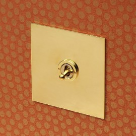1 Gang 2 Way 20A Dolly Switch in Unlacquered Brass Plate and Dolly from Forbes and Lomax