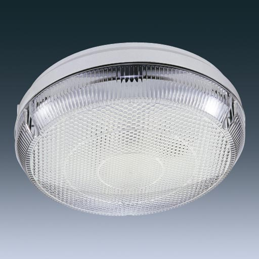 Leroz28w Leopard High Frequency 1x28w Rd White Outdoor